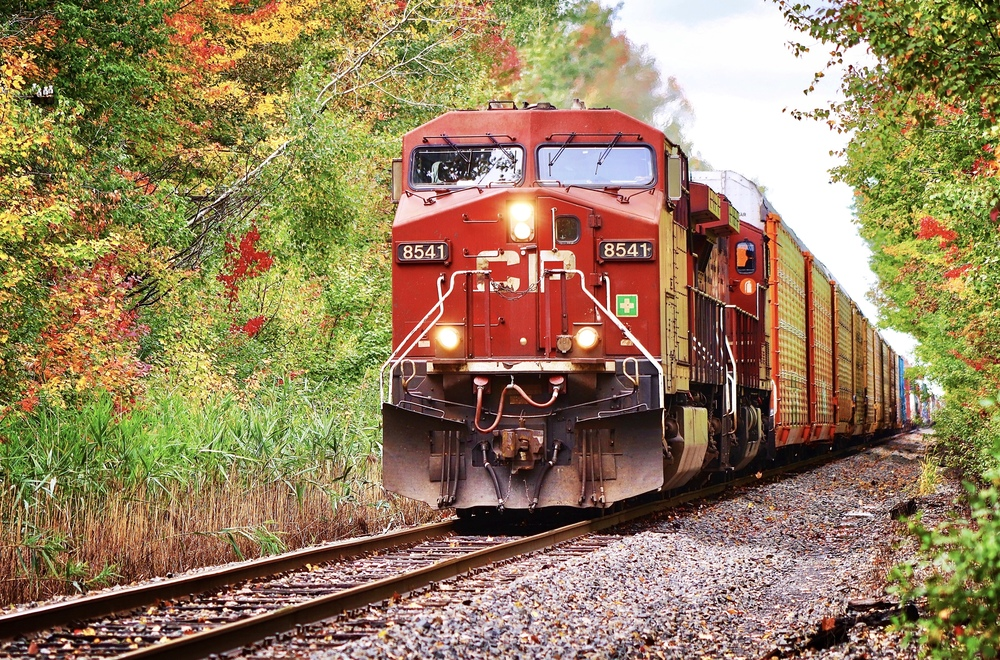 Freight Train beauties with Benchaholic